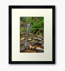 A Portrait of a Nature. Framed Print