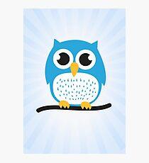 Sweet & cute owl Photographic Print