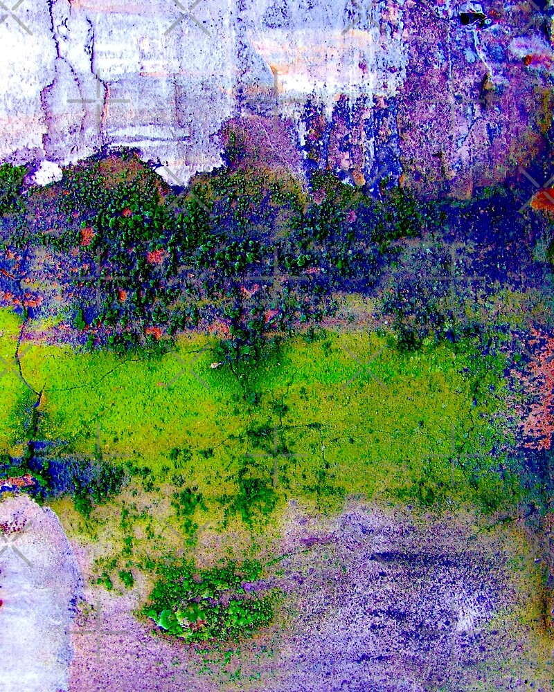 Wall Abstract by BavosiPhotoArt