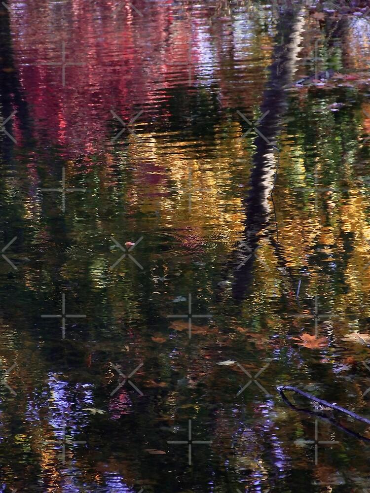 Hayes Pond Reflection by BavosiPhotoArt