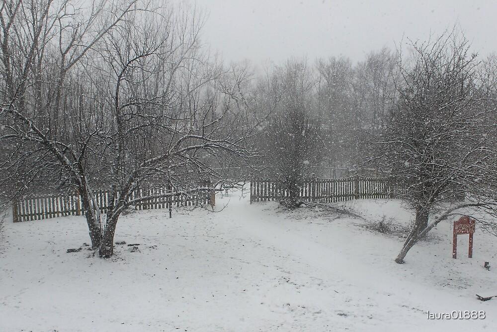 winter wonderland by laura01888