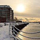 Snowfall1 by d1373l