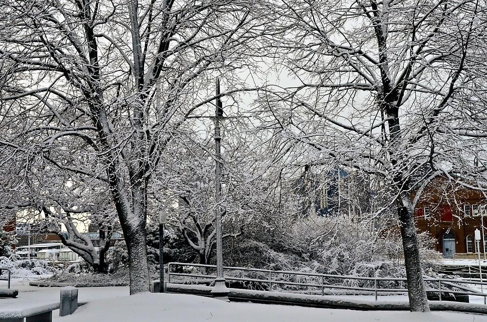 Snowfall3 by d1373l