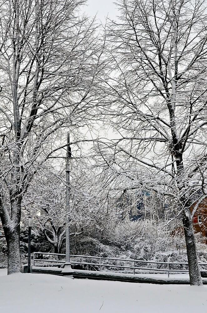 Snowfall 5 by d1373l