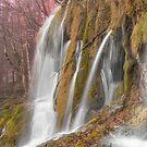Autumn waterfall by Ivan  Prebeg
