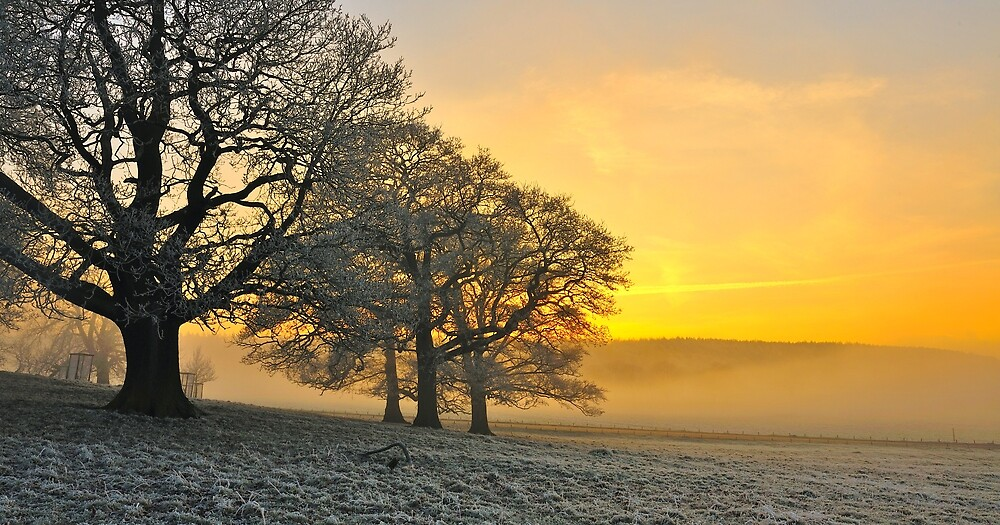 Winter Landscape by Moments In Time Photography