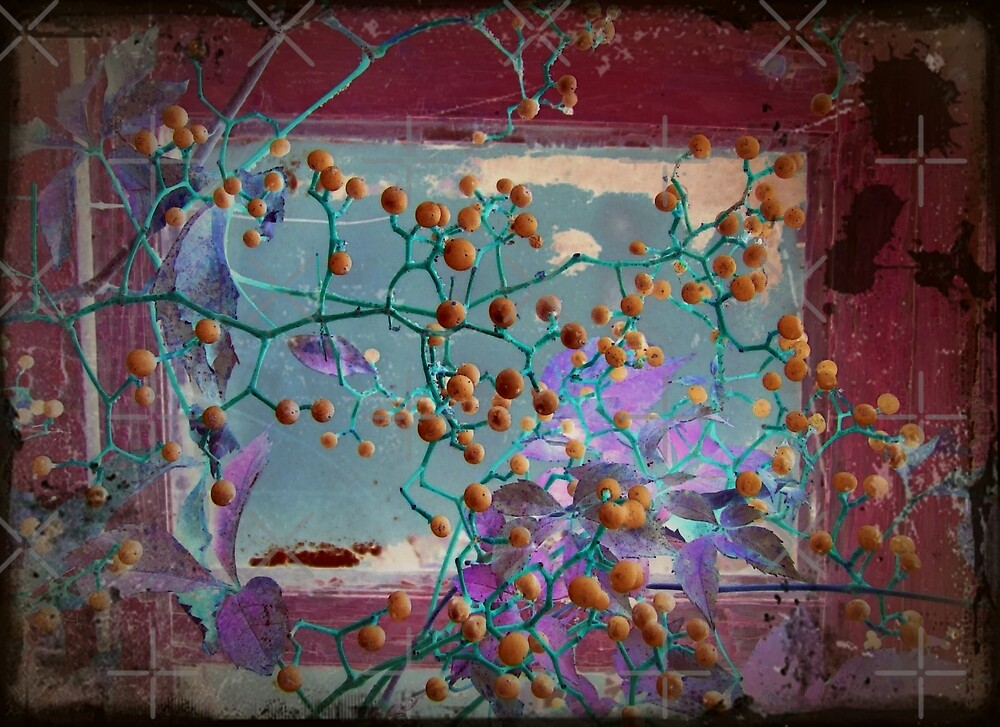 Window Berry Abstract by BavosiPhotoArt