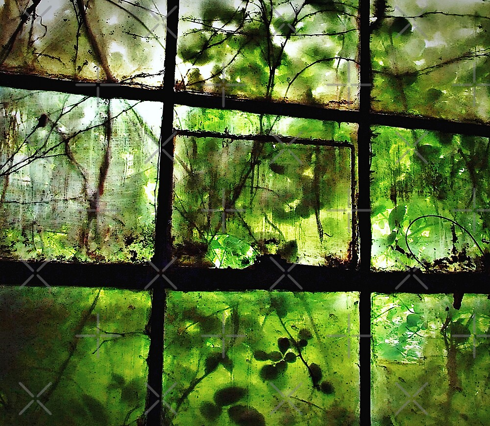 Green Leaves On Window l by BavosiPhotoArt