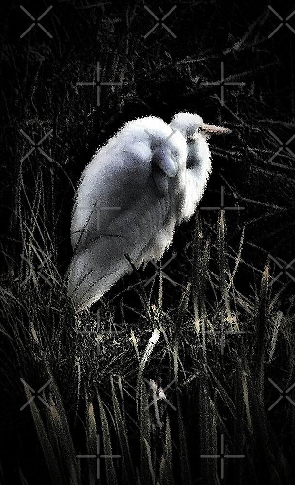 Egret In Black And White ll by BavosiPhotoArt