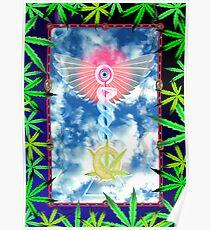 Cannabis Caduceus from Valxart.com  Poster