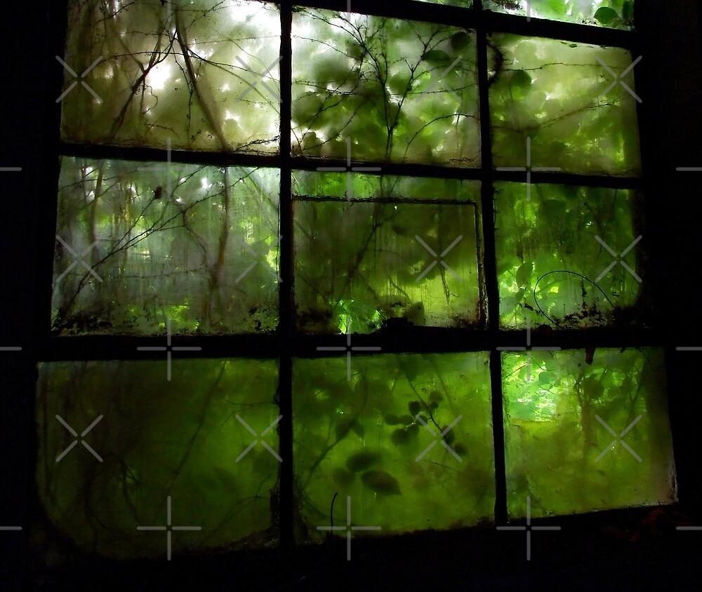Green Leaves On Window lll by BavosiPhotoArt