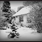 Winter Wonderland Cottage  by carolhynes