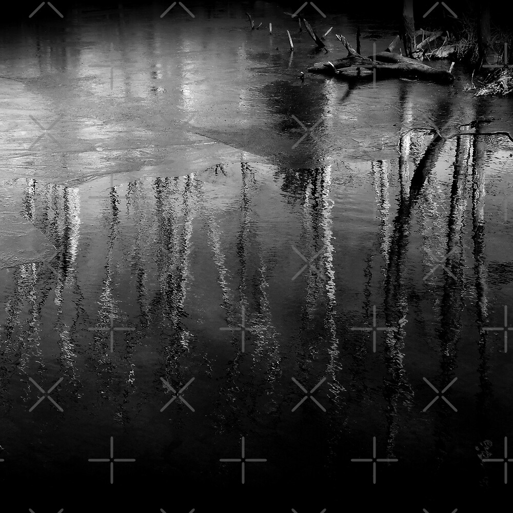 Tree Reflections In Black And White l by BavosiPhotoArt