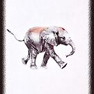 Little Elephant by amira