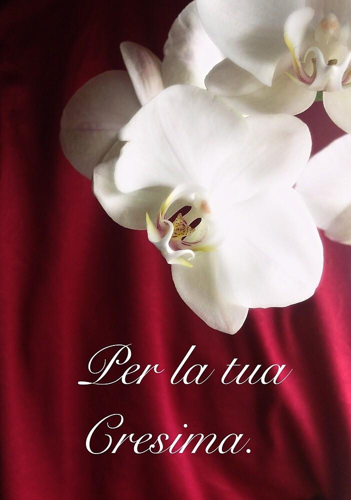 Per te VI by Alisea