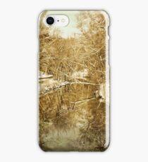 Rock Creek Park: Winter iPhone Case/Skin