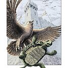 The Tortoise and the Eagle by Stephanie Smith