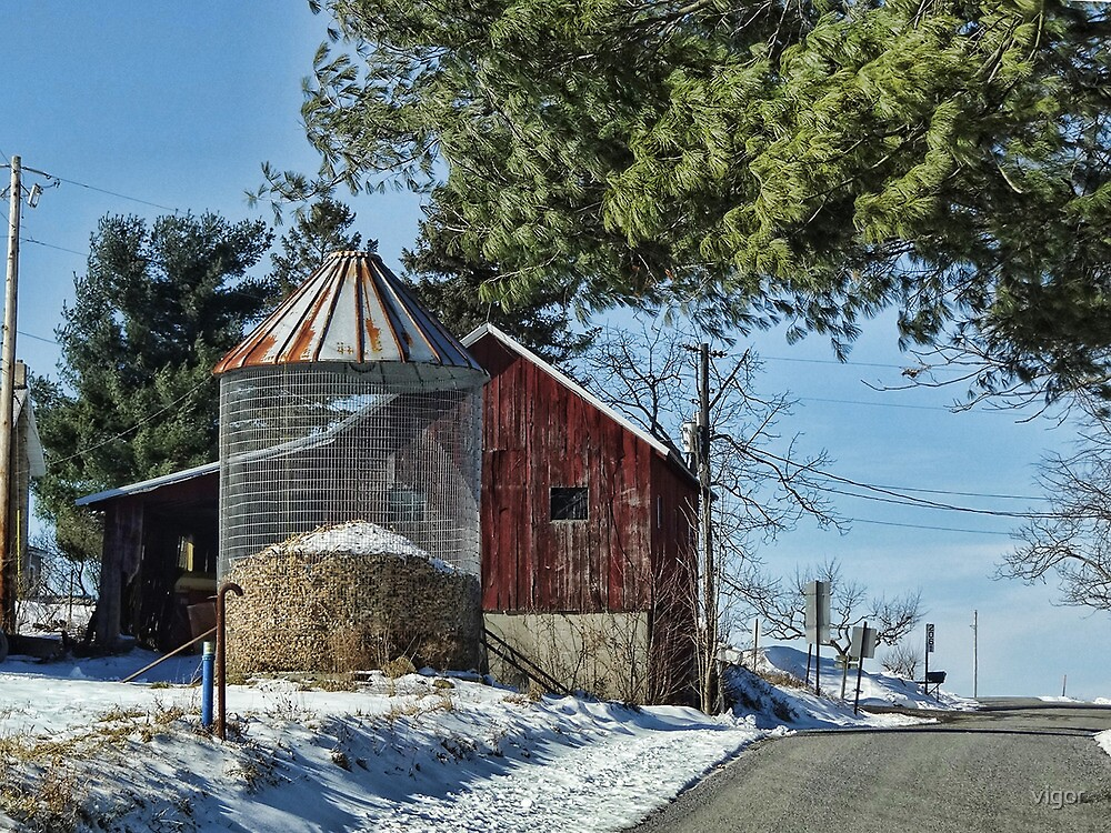 Drive by Barn by vigor