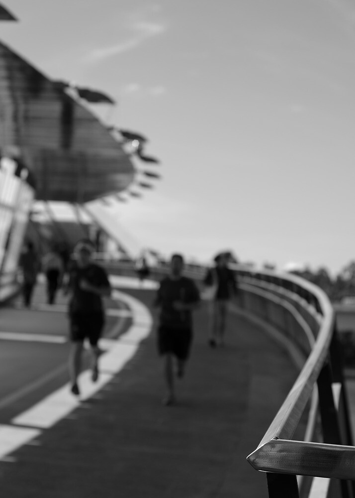 The Running Bridge by Daniel Carr
