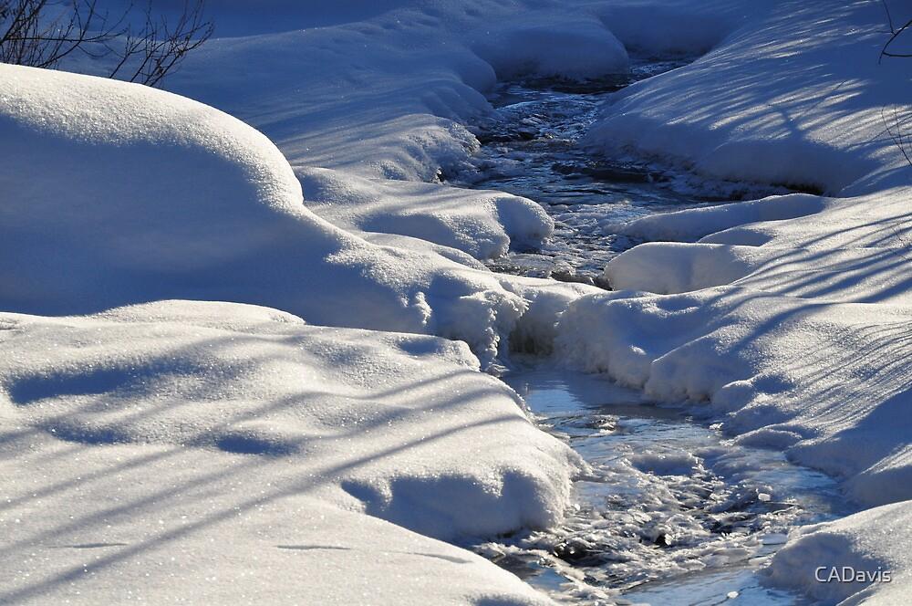 Frozen Stream by CADavis