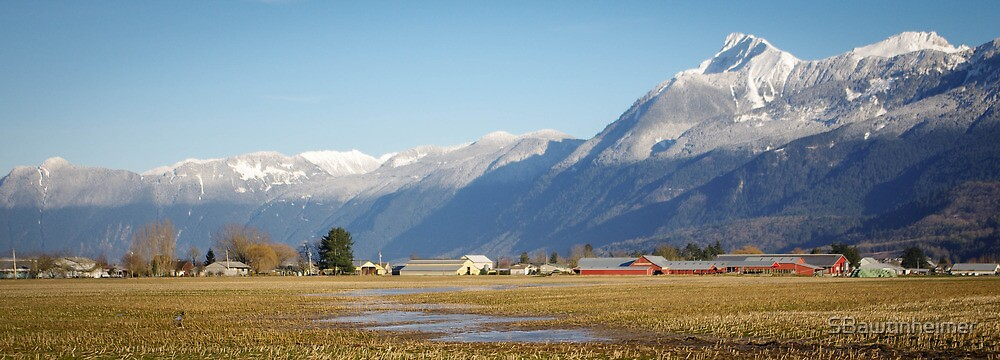 Mt Cheam Guarding the Fraser Valley by Sheri Bawtinheimer