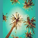 Palm Tree - Iphone Case  by sullat04