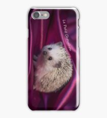 The Little Hedgehog 2 iPhone Case/Skin
