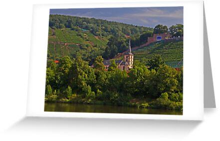 Church & Vines by GW-FotoWerx