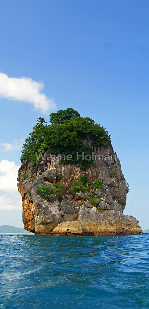 Vista Rock  by Wayne Holman