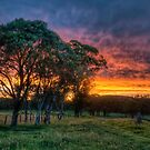 Wards Country Sunset by Jason Ruth