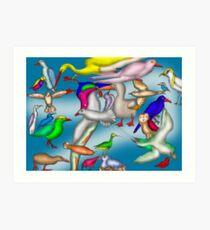 Lord Howe Island Birds Art Print