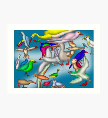 Lord Howe Island Birds Art Print