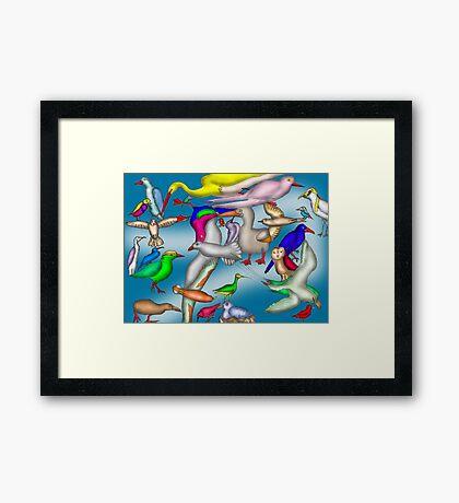 Lord Howe Island Birds Framed Print
