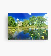 Derbyshire Landscapes Metal Print