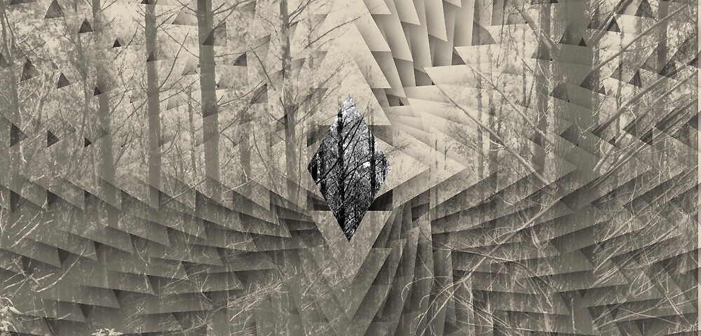 Forest Scales by heathJM