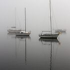 Morning mist on Lake Macquarie by Timothy John Keegan