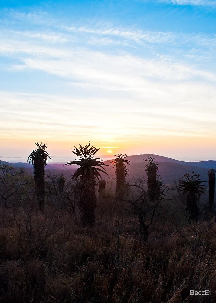 Dawn by BeccE