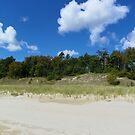 Beach Backdrop by mussermd