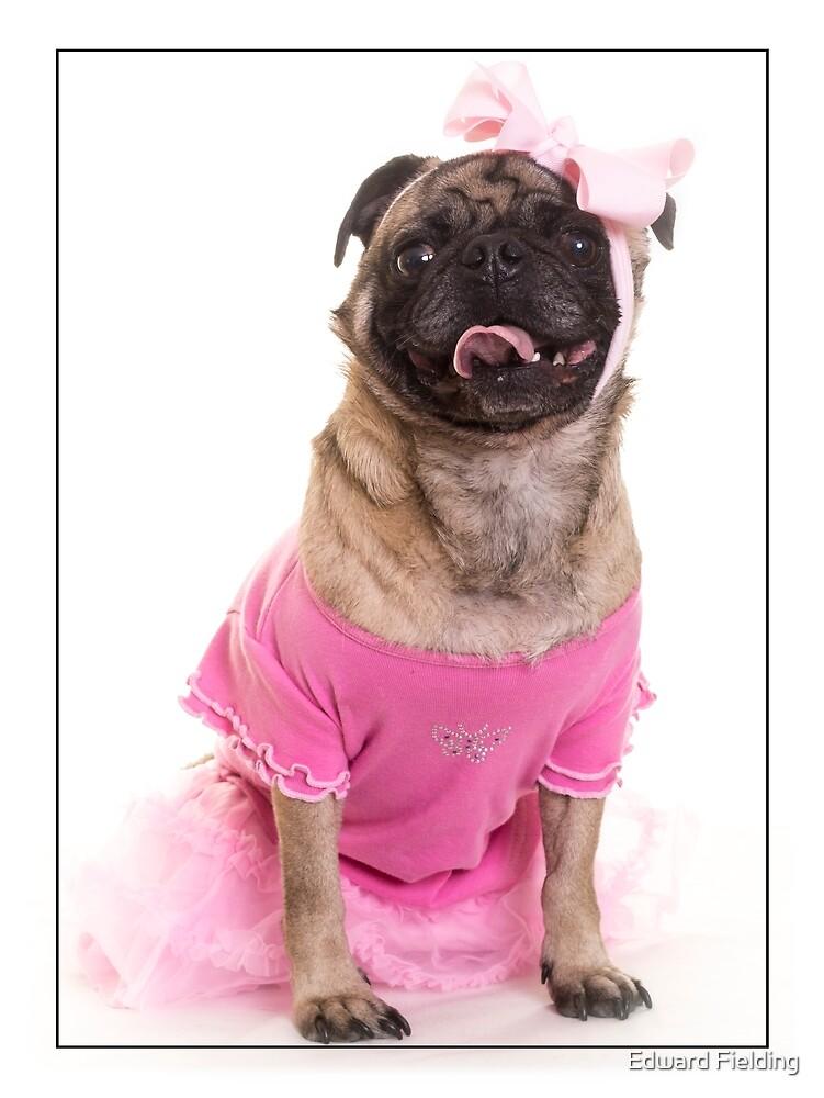 Ballerina Dancer Dog by Edward Fielding