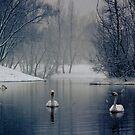 Snow at the Lake by Sabaa