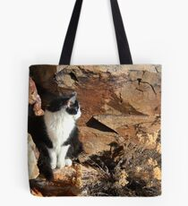 Angel On The Rock Tote Bag