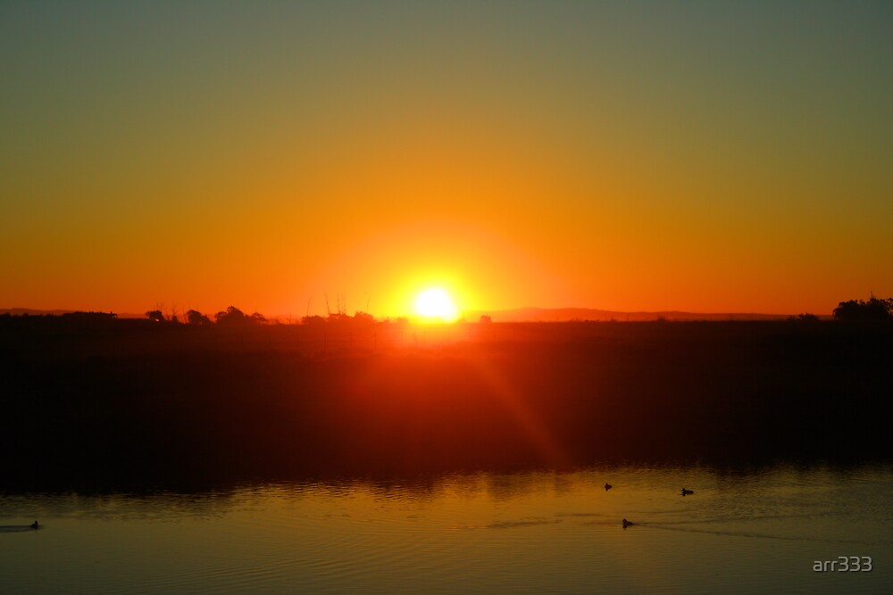 Good Morning Bolsa Chica Wetlands by arr333