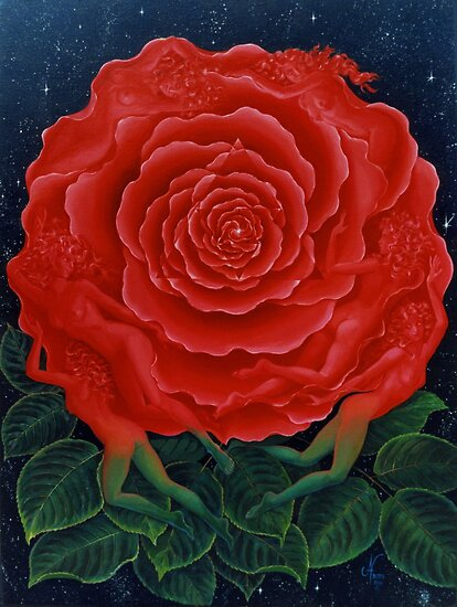 Rose Mandala by Jan Betts
