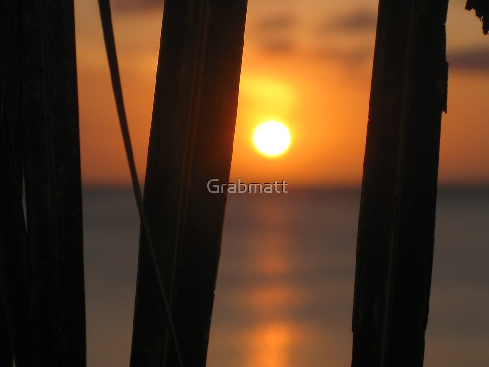 Aruba by Grabmatt