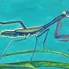 Praying Mantis by Asher Davidson