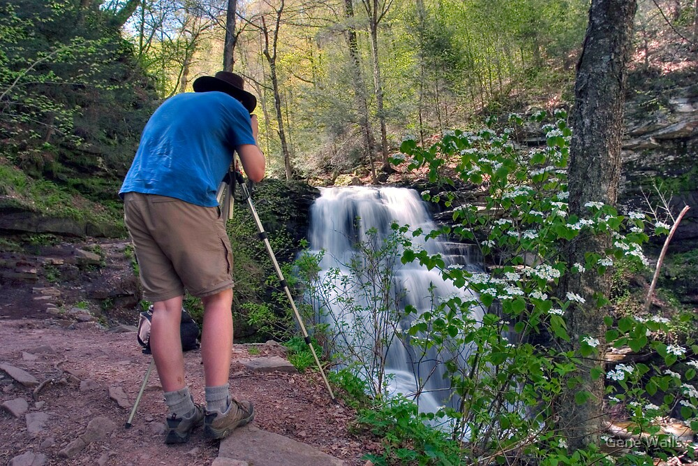 Nature Photographer & Subject by Gene Walls