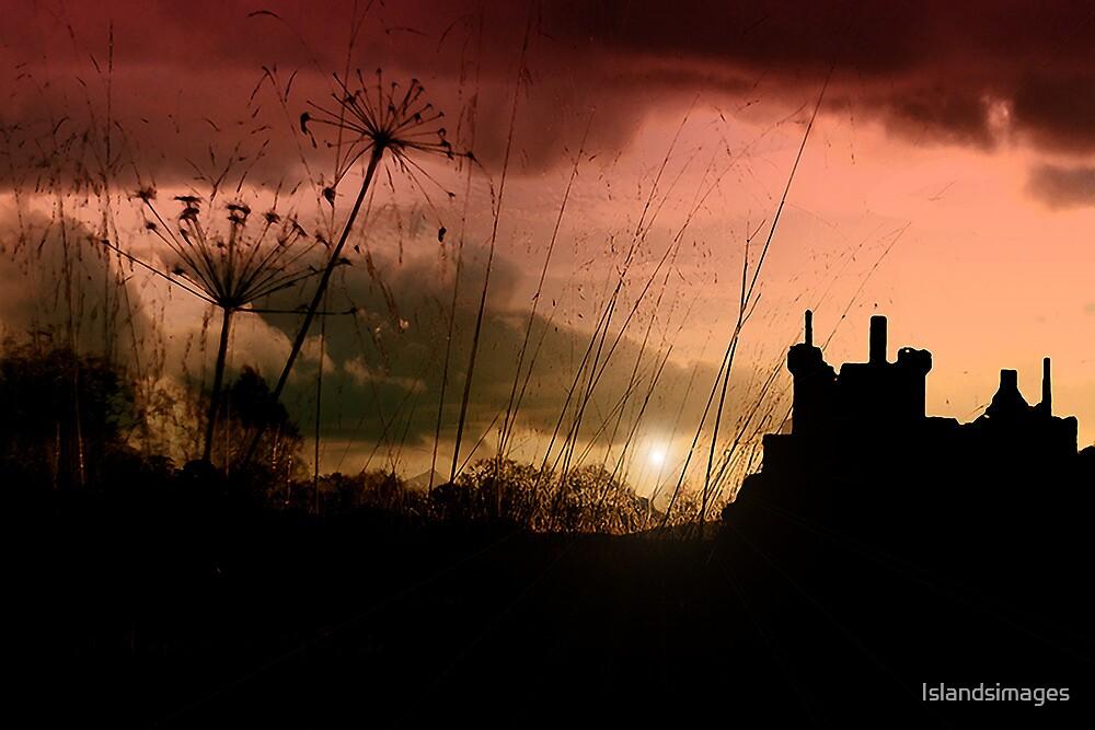 Kilchurn Castle at sunset by Islandsimages