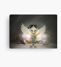 Wings anyone? Canvas Print