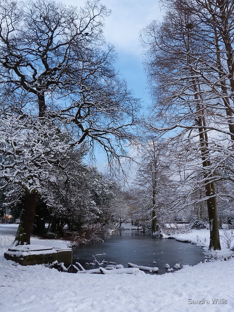 Wintery park Landscape  by Sandra Willis