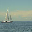 sailing by Ziva Javersek